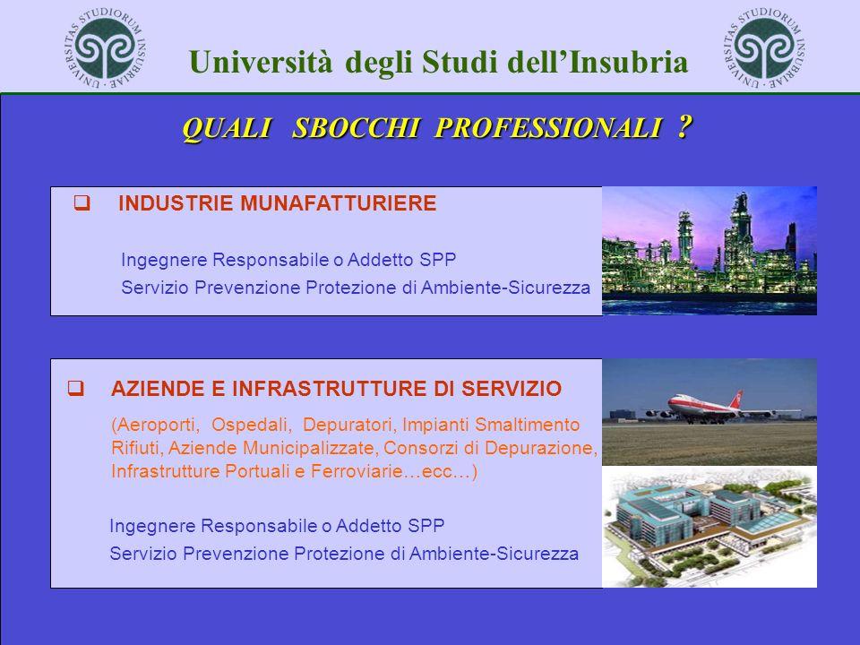 Università degli Studi dellInsubria QUALI SBOCCHI PROFESSIONALI ? INDUSTRIE MUNAFATTURIERE Ingegnere Responsabile o Addetto SPP Servizio Prevenzione P