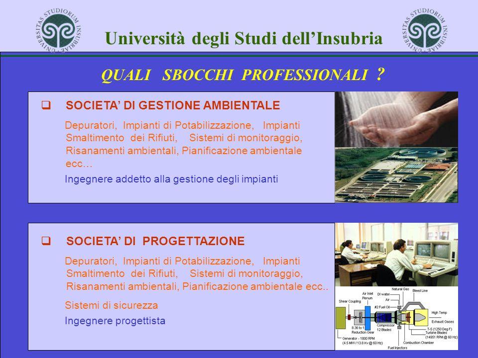 Università degli Studi dellInsubria QUALI SBOCCHI PROFESSIONALI .
