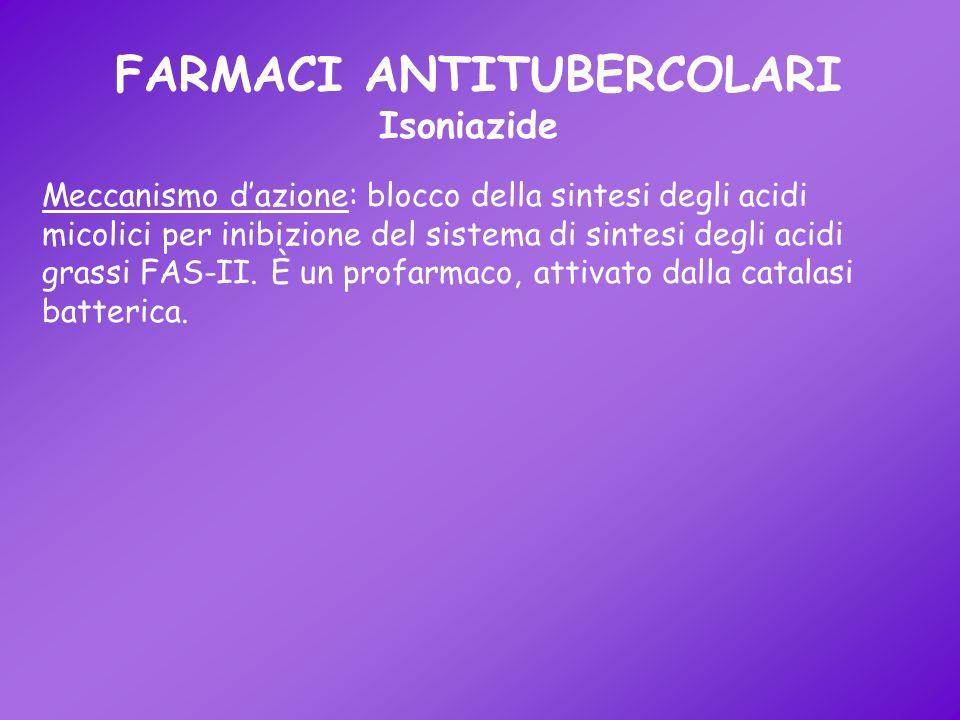 FARMACI ANTITUBERCOLARI Isoniazide Meccanismo dazione: blocco della sintesi degli acidi micolici per inibizione del sistema di sintesi degli acidi gra