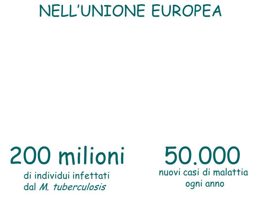 50.000200 milioni nuovi casi di malattia ogni anno di individui infettati dal M. tuberculosis NELLUNIONE EUROPEA