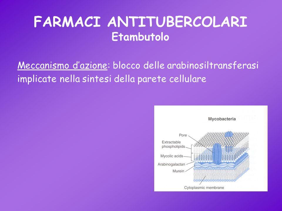 FARMACI ANTITUBERCOLARI Etambutolo Meccanismo dazione: blocco delle arabinosiltransferasi implicate nella sintesi della parete cellulare