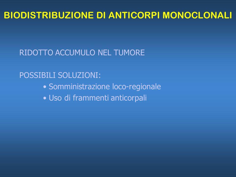 BIODISTRIBUZIONE DI ANTICORPI MONOCLONALI RIDOTTO ACCUMULO NEL TUMORE POSSIBILI SOLUZIONI: Somministrazione loco-regionale Uso di frammenti anticorpal
