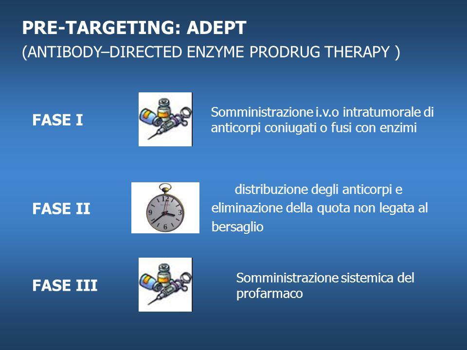 PRE-TARGETING: ADEPT (ANTIBODY–DIRECTED ENZYME PRODRUG THERAPY ) Somministrazione i.v.o intratumorale di anticorpi coniugati o fusi con enzimi distrib