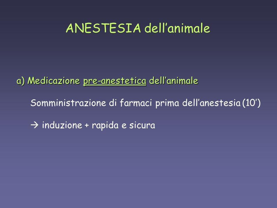 ATROPINA (0.04 mg/kg s.c.) parasimpaticolitico (antagonista colinergico muscarinico) secrezioni bronchiali, salivari e nasali azione broncodilatatoria previene bradicardia