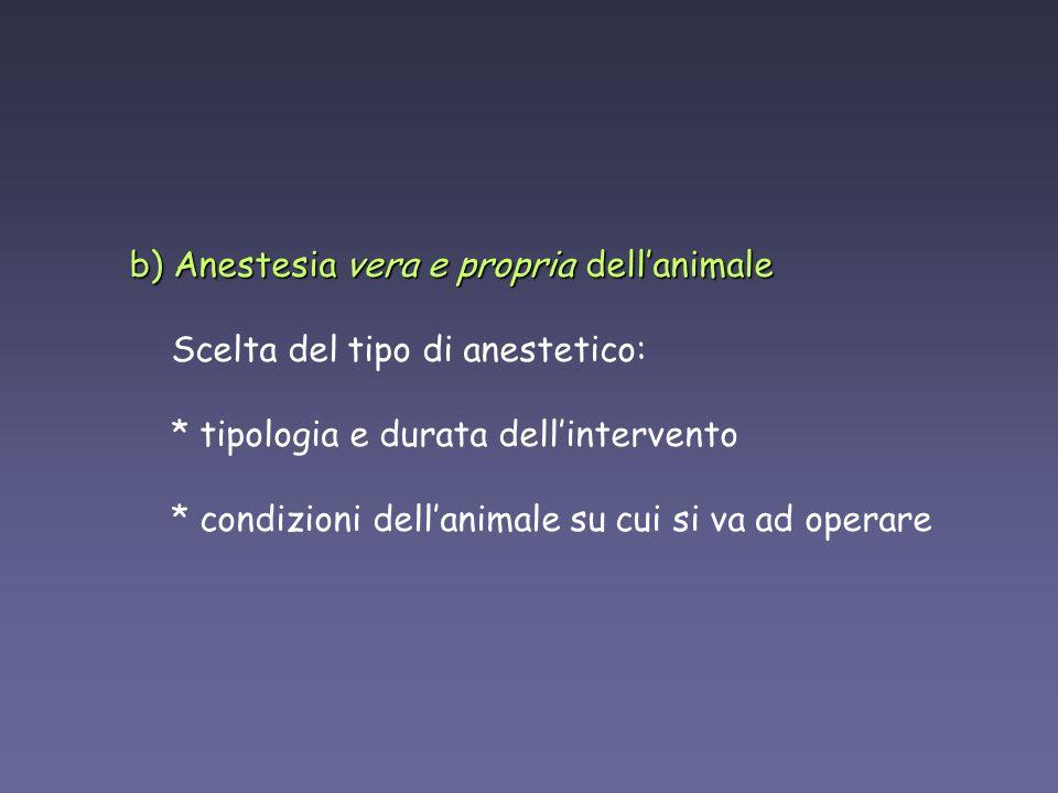 AgentDoseDuration of surgical anesthesia Pentobarbital50 mg/kg IP20-40 minutes Tribromoethanol (avertin)240 mg/kg IP 30 30 15-45 minutes Metomidate/fentanyl60 mg/kg + 0.06 mg/kg SQ 29 29 20-30 minutes Ketamine/xylazine80-100 mg/kg + 10 mg/kg IP 29 29 20-30 minutes PARENTERAL ANESTHESIA OF MICE