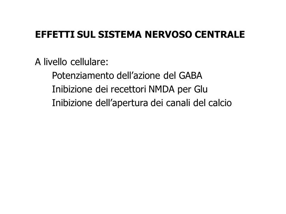 EFFETTI SUL SISTEMA NERVOSO CENTRALE A livello cellulare: Potenziamento dellazione del GABA Inibizione dei recettori NMDA per Glu Inibizione dellapert