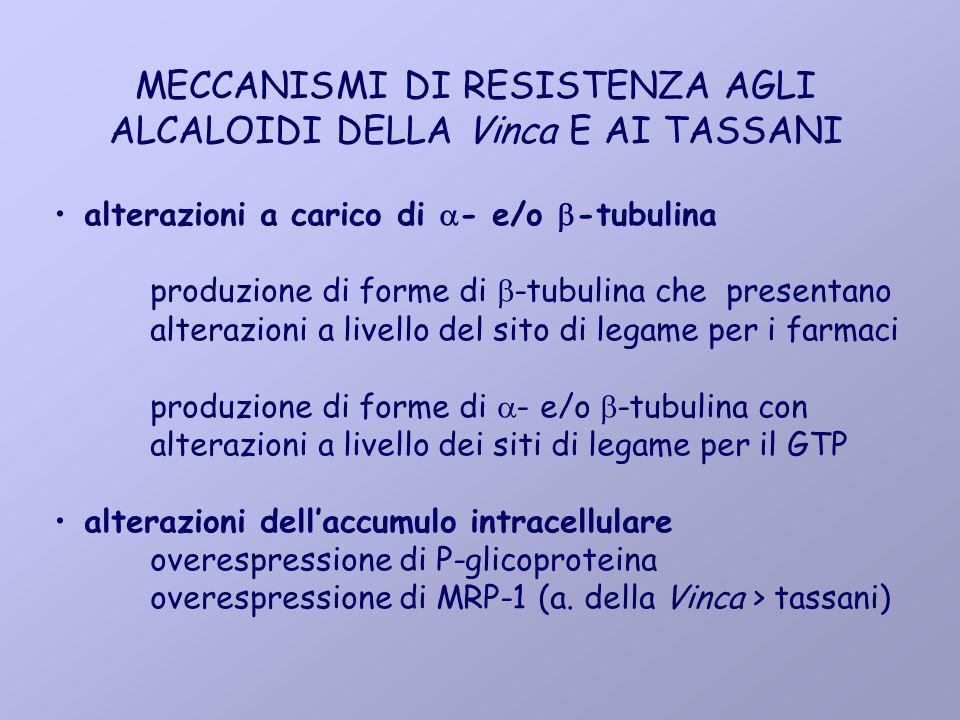 MECCANISMI DI RESISTENZA AGLI ALCALOIDI DELLA Vinca E AI TASSANI alterazioni a carico di - e/o -tubulina produzione di forme di -tubulina che presenta