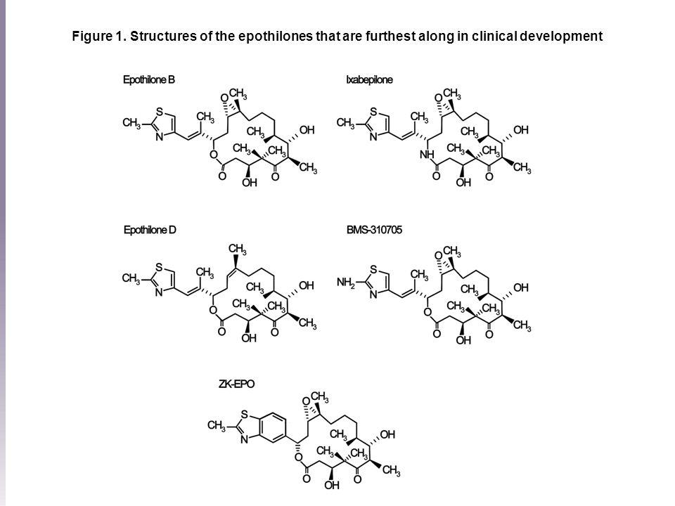 Figure 1. Structures of the epothilones that are furthest along in clinical development