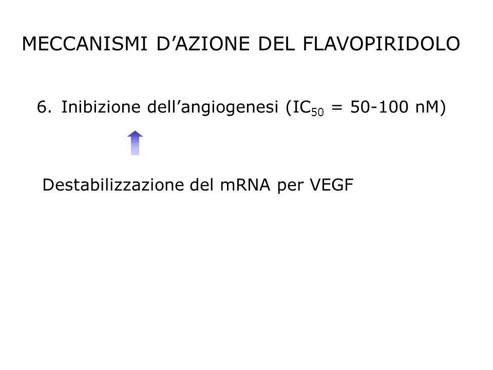6.Inibizione dellangiogenesi (IC 50 = 50-100 nM) Destabilizzazione del mRNA per VEGF MECCANISMI DAZIONE DEL FLAVOPIRIDOLO