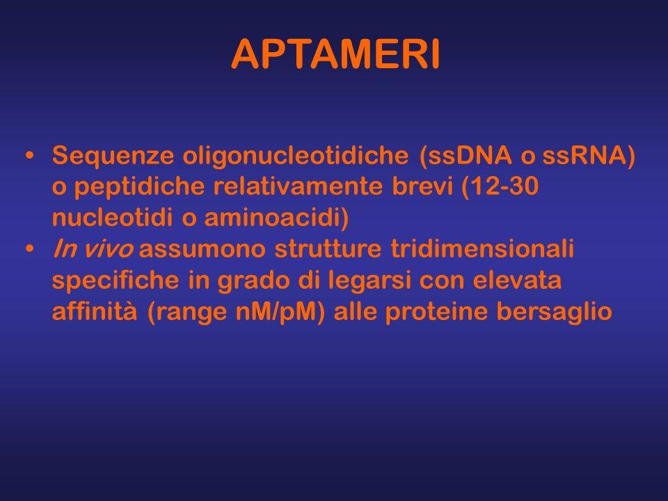 APTAMERI Sequenze oligonucleotidiche (ssDNA o ssRNA) o peptidiche relativamente brevi (12-30 nucleotidi o aminoacidi) In vivo assumono strutture tridi
