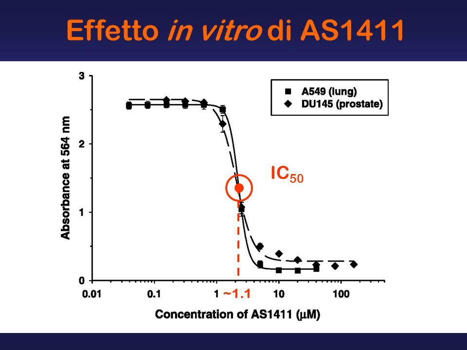 Effetto in vitro di AS1411 IC 50 ~1.1