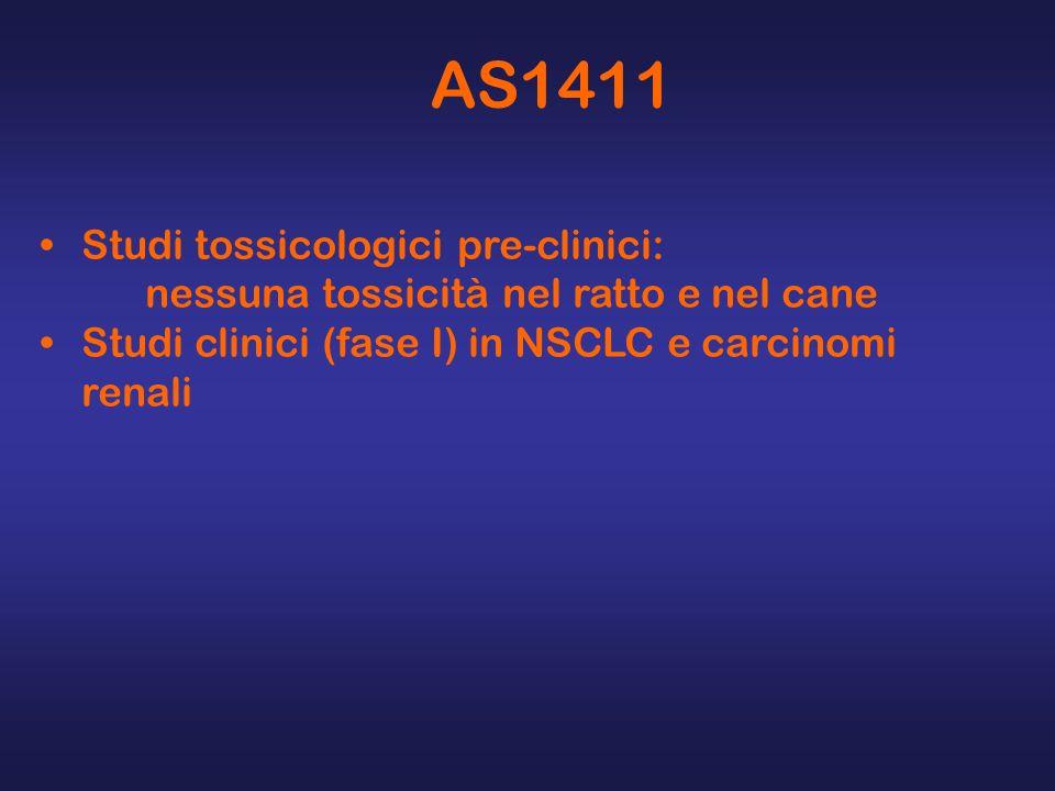 AS1411 Studi tossicologici pre-clinici: nessuna tossicità nel ratto e nel cane Studi clinici (fase I) in NSCLC e carcinomi renali