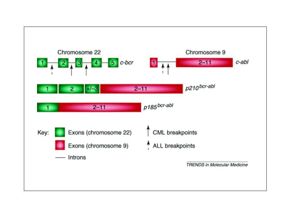 ULTERIORI APPLICAZIONI TERAPEUTICHE DEL GLIVEC GIST Gastrointestinal stromal tumors