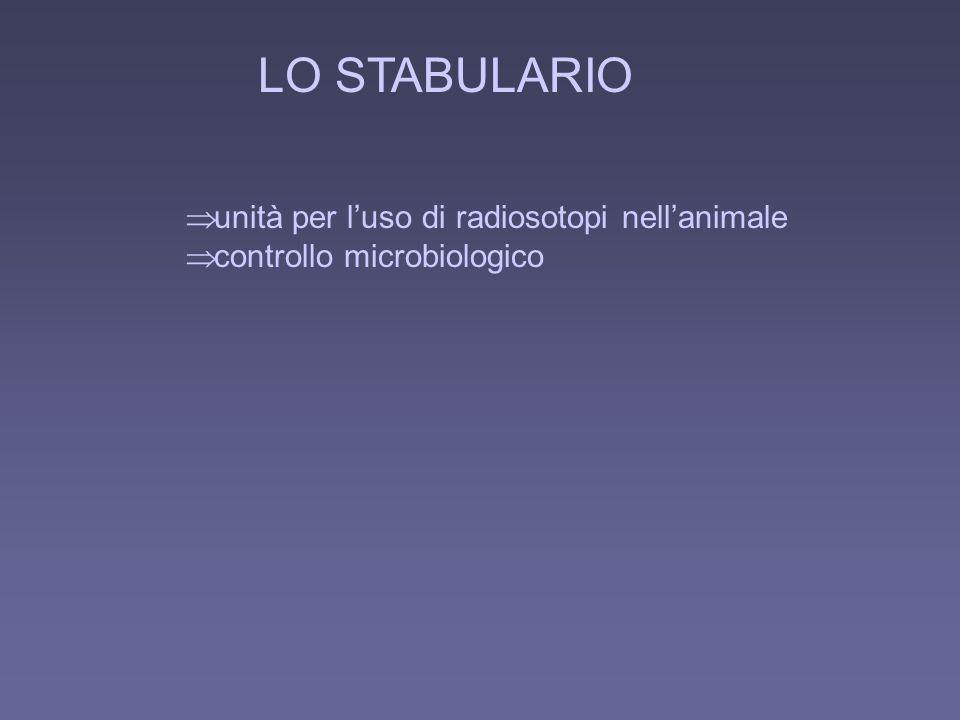 LO STABULARIO unità per luso di radiosotopi nellanimale controllo microbiologico