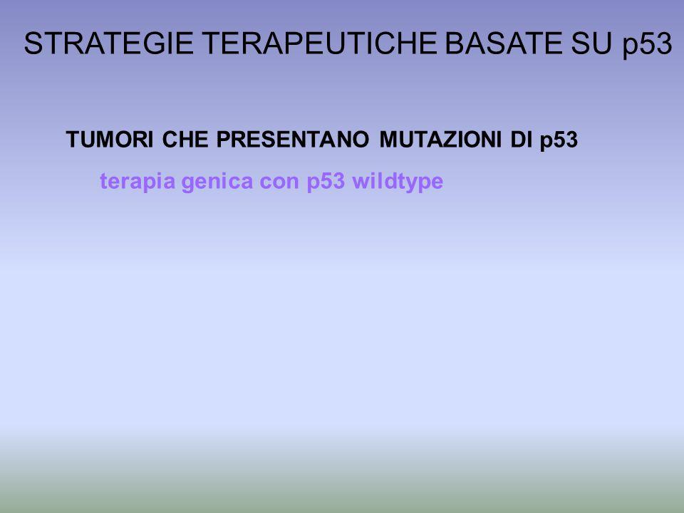 STRATEGIE TERAPEUTICHE BASATE SU p53 TUMORI CHE PRESENTANO MUTAZIONI DI p53 terapia genica con p53 wildtype