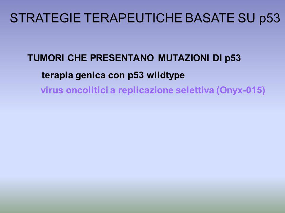 STRATEGIE TERAPEUTICHE BASATE SU p53 TUMORI CHE PRESENTANO MUTAZIONI DI p53 terapia genica con p53 wildtype virus oncolitici a replicazione selettiva