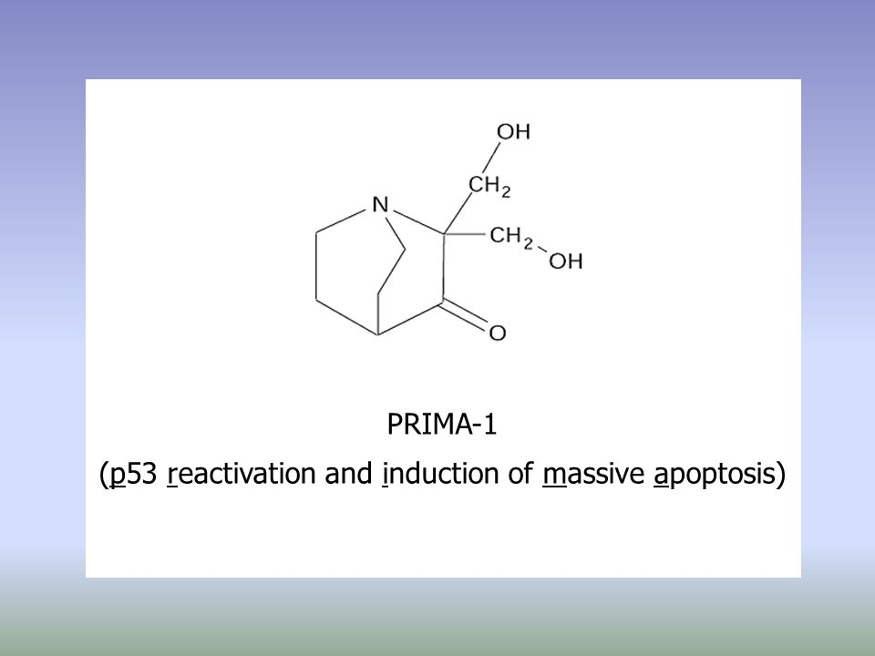 PRIMA-1 (p53 reactivation and induction of massive apoptosis)
