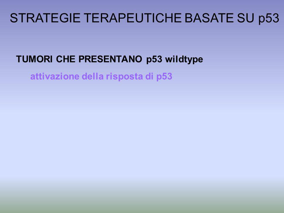 STRATEGIE TERAPEUTICHE BASATE SU p53 TUMORI CHE PRESENTANO p53 wildtype attivazione della risposta di p53