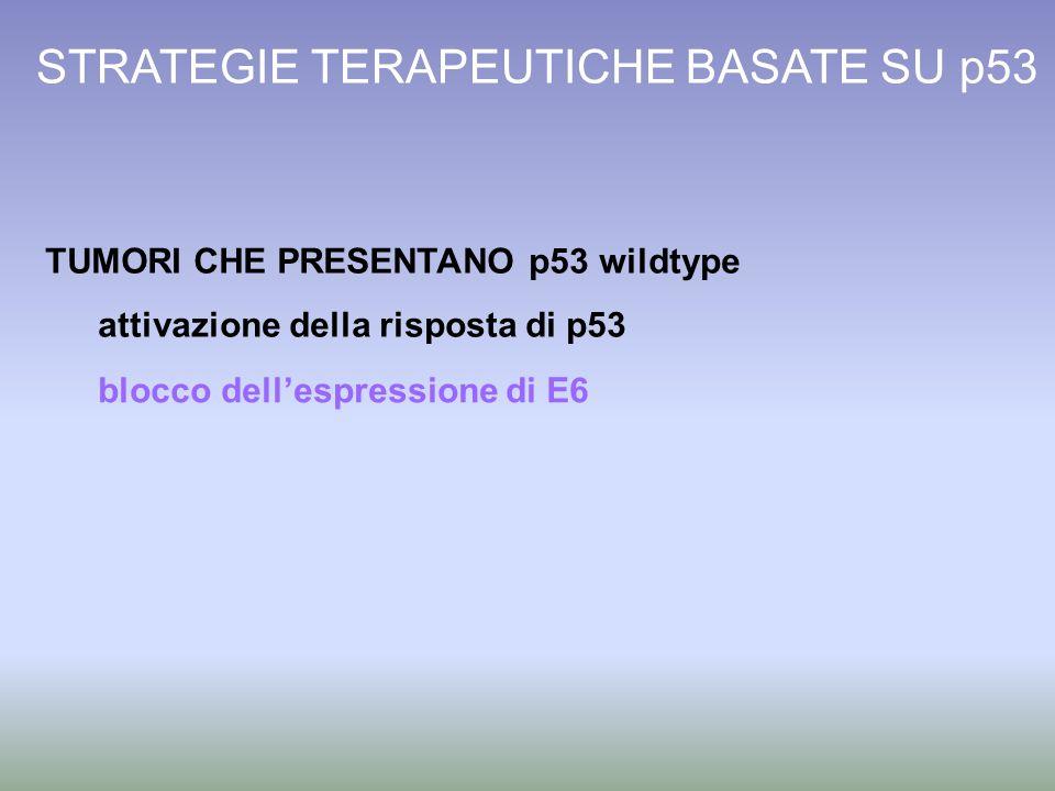 STRATEGIE TERAPEUTICHE BASATE SU p53 TUMORI CHE PRESENTANO p53 wildtype attivazione della risposta di p53 blocco dellespressione di E6