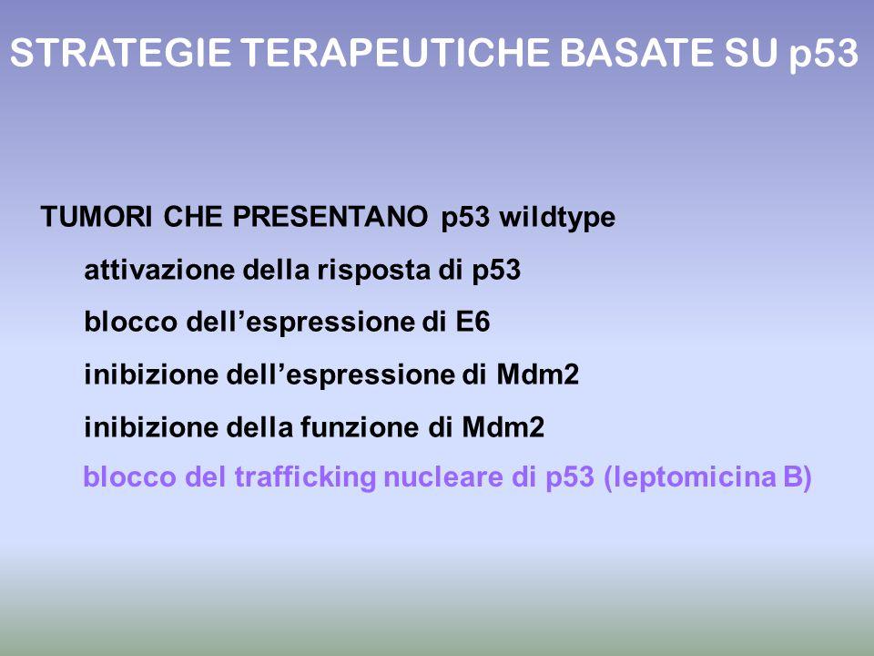 STRATEGIE TERAPEUTICHE BASATE SU p53 blocco del trafficking nucleare di p53 (leptomicina B) TUMORI CHE PRESENTANO p53 wildtype attivazione della rispo