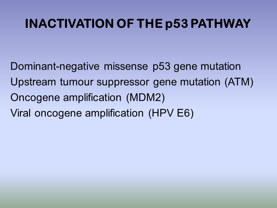 Dominant-negative missense p53 gene mutation Upstream tumour suppressor gene mutation (ATM) Oncogene amplification (MDM2) Viral oncogene amplification (HPV E6) INACTIVATION OF THE p53 PATHWAY