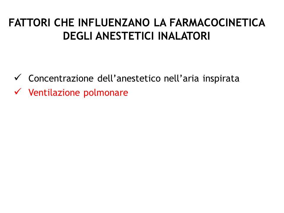 FATTORI CHE INFLUENZANO LA FARMACOCINETICA DEGLI ANESTETICI INALATORI Concentrazione dellanestetico nellaria inspirata Ventilazione polmonare