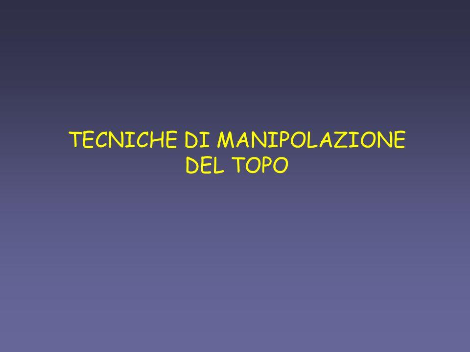 TECNICHE DI MANIPOLAZIONE DEL TOPO