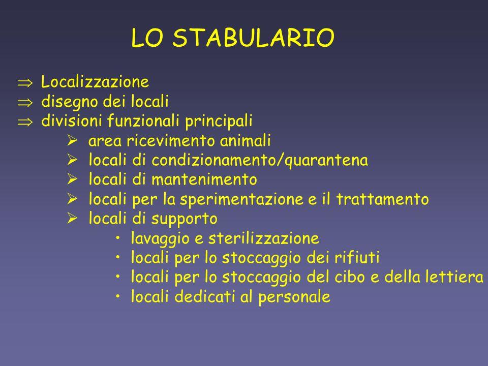 LO STABULARIO Localizzazione disegno dei locali divisioni funzionali principali area ricevimento animali locali di condizionamento/quarantena locali d
