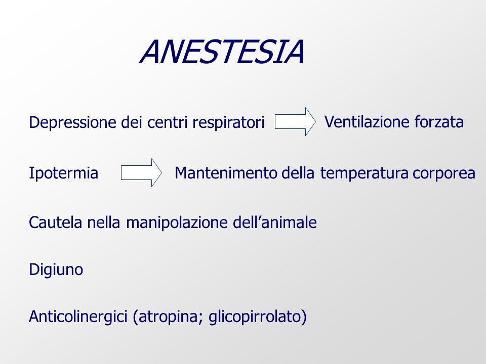 ANESTESIA Cautela nella manipolazione dellanimale Depressione dei centri respiratori Ventilazione forzataIpotermiaMantenimento della temperatura corporea Digiuno Anticolinergici (atropina; glicopirrolato)
