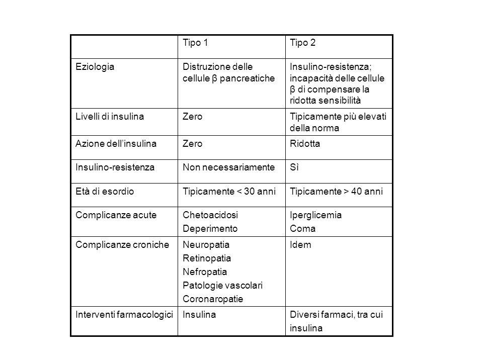 Diversi farmaci, tra cui insulina InsulinaInterventi farmacologici IdemNeuropatia Retinopatia Nefropatia Patologie vascolari Coronaropatie Complicanze croniche Iperglicemia Coma Chetoacidosi Deperimento Complicanze acute Tipicamente > 40 anniTipicamente < 30 anniEtà di esordio RidottaZeroAzione dellinsulina Tipicamente più elevati della norma ZeroLivelli di insulina Insulino-resistenza; incapacità delle cellule β di compensare la ridotta sensibilità Distruzione delle cellule β pancreatiche Eziologia Tipo 2Tipo 1 SìNon necessariamenteInsulino-resistenza