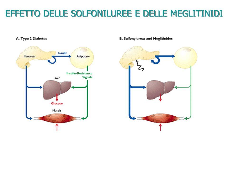 EFFETTO DELLE SOLFONILUREE E DELLE MEGLITINIDI