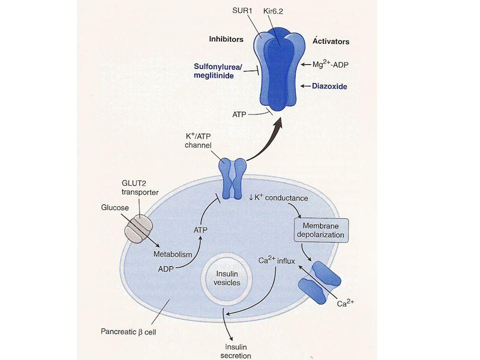 NUOVE TERAPIE FARMACOLOGICHE PER IL DIABETE DI TIPO 2 1.Analoghi delle incretine 2.Inibitori della dipeptidil peptidasi IV