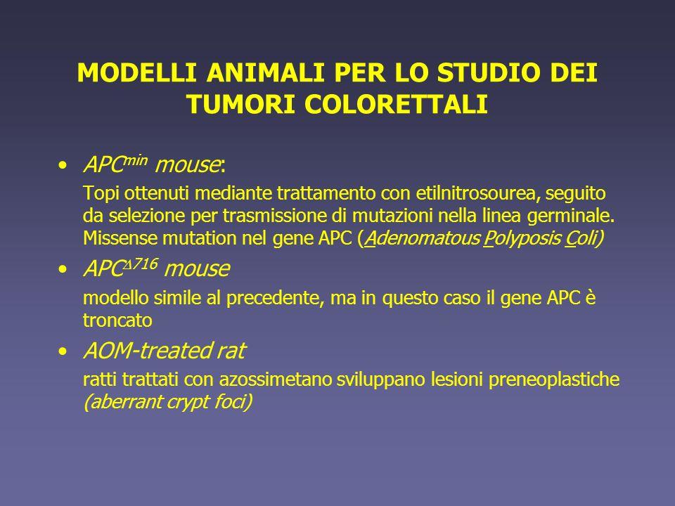 MODELLI ANIMALI PER LO STUDIO DEI TUMORI COLORETTALI APC min mouse: Topi ottenuti mediante trattamento con etilnitrosourea, seguito da selezione per t