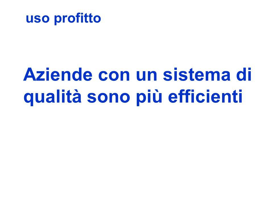 uso profitto Aziende con un sistema di qualità sono più efficienti