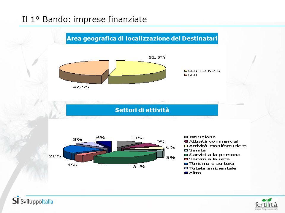 Settori di attività Area geografica di localizzazione dei Destinatari Il 1° Bando: imprese finanziate