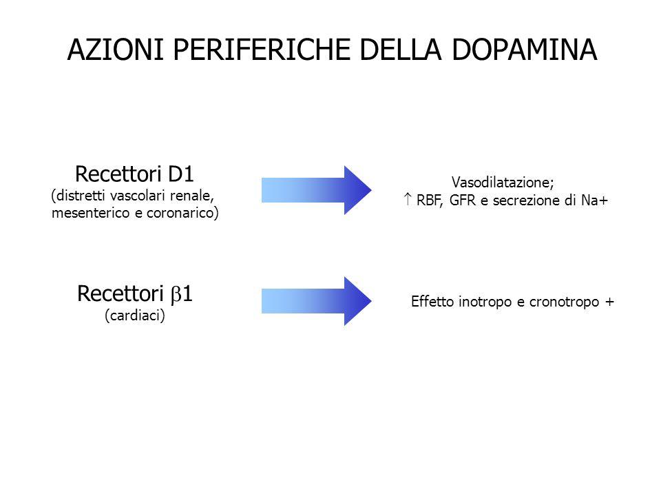 AZIONI PERIFERICHE DELLA DOPAMINA Recettori D1 (distretti vascolari renale, mesenterico e coronarico) Recettori 1 (cardiaci) Vasodilatazione; RBF, GFR
