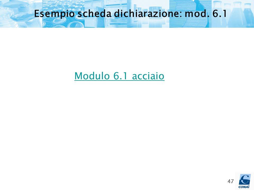 47 Modulo 6.1 acciaio Esempio scheda dichiarazione: mod. 6.1