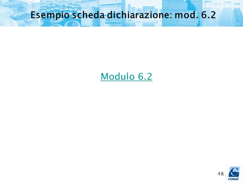 48 Modulo 6.2 Esempio scheda dichiarazione: mod. 6.2