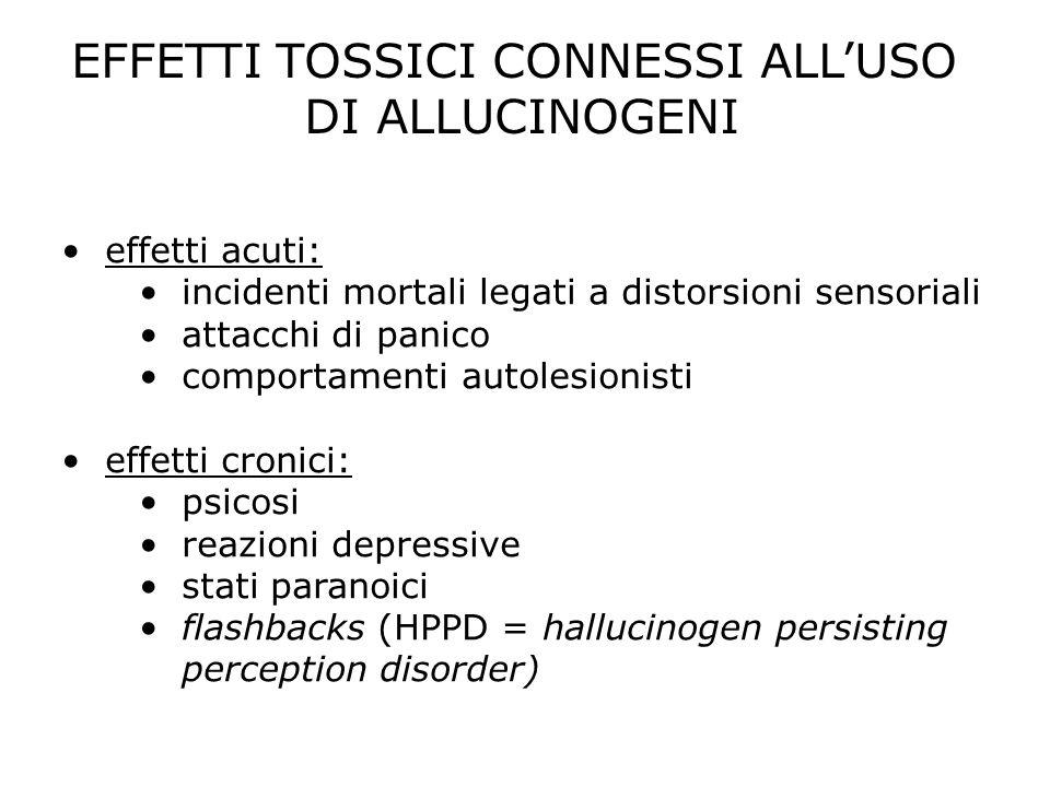 EFFETTI TOSSICI CONNESSI ALLUSO DI ALLUCINOGENI effetti acuti: incidenti mortali legati a distorsioni sensoriali attacchi di panico comportamenti auto