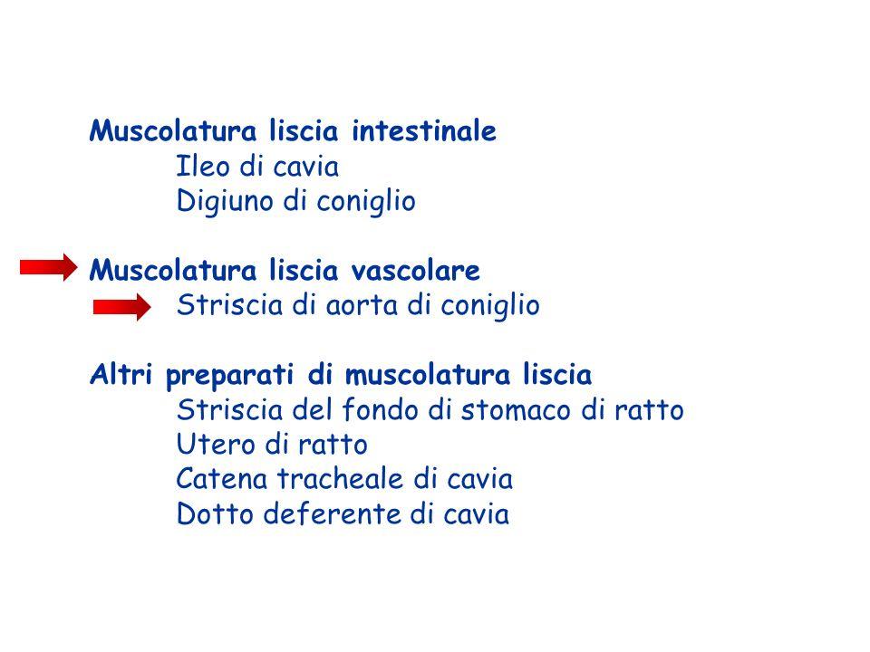 Muscolatura liscia intestinale Ileo di cavia Digiuno di coniglio Muscolatura liscia vascolare Striscia di aorta di coniglio Altri preparati di muscola