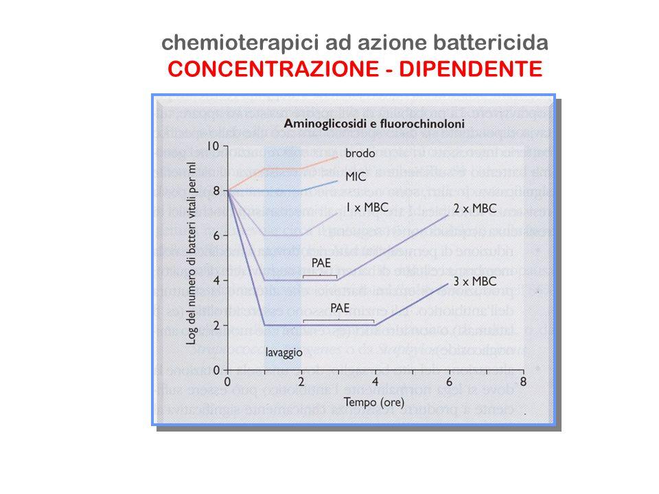 chemioterapici ad azione battericida CONCENTRAZIONE - DIPENDENTE