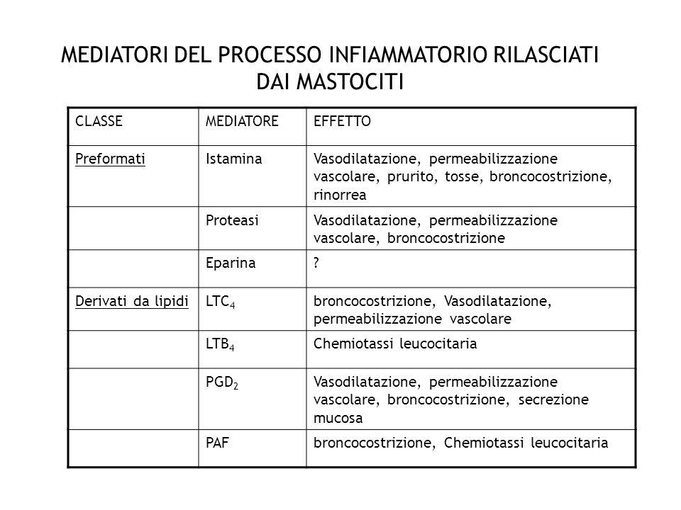 MEDIATORI DEL PROCESSO INFIAMMATORIO RILASCIATI DAI MASTOCITI CLASSEMEDIATOREEFFETTO PreformatiIstaminaVasodilatazione, permeabilizzazione vascolare,