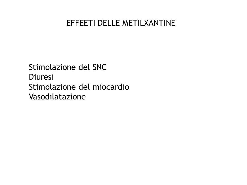 EFFEETI DELLE METILXANTINE Stimolazione del SNC Diuresi Stimolazione del miocardio Vasodilatazione