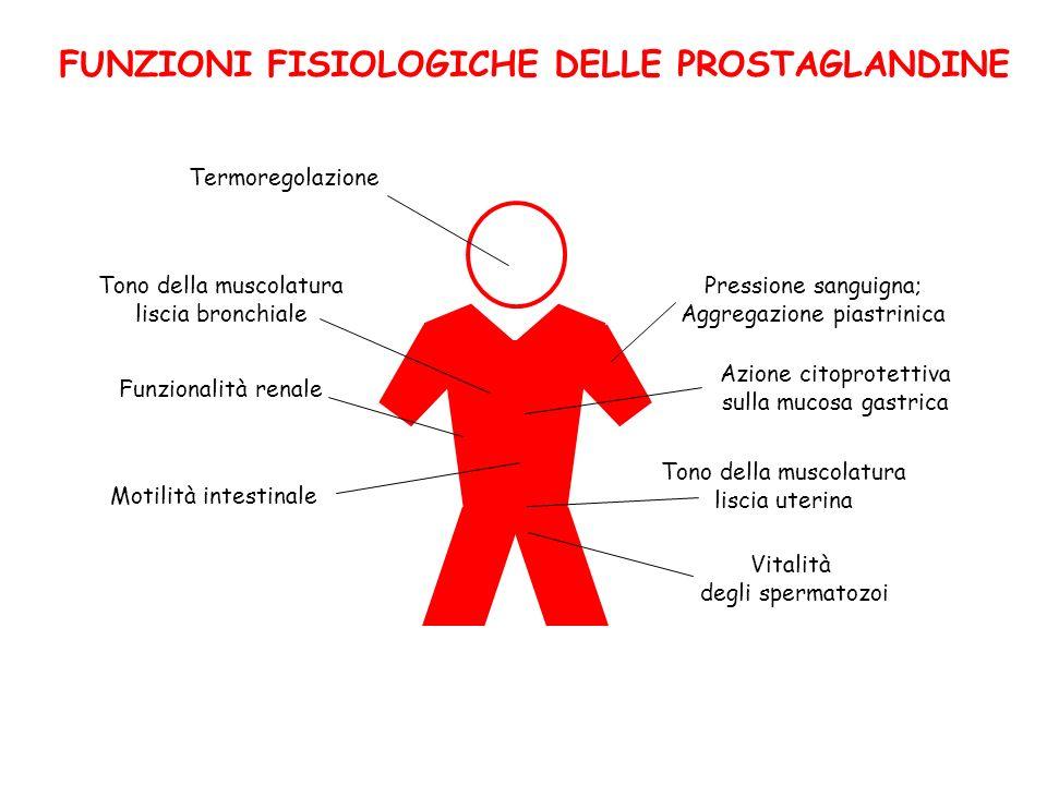 FUNZIONI FISIOLOGICHE DELLE PROSTAGLANDINE Termoregolazione Pressione sanguigna; Aggregazione piastrinica Azione citoprotettiva sulla mucosa gastrica