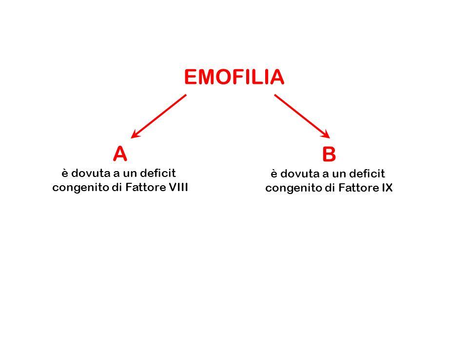 EMOFILIA A è dovuta a un deficit congenito di Fattore VIII B è dovuta a un deficit congenito di Fattore IX