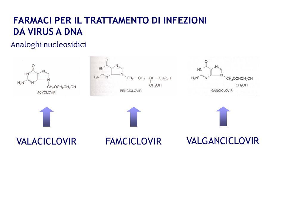 FARMACI PER IL TRATTAMENTO DI INFEZIONI DA VIRUS A DNA Analoghi nucleosidici VALACICLOVIR FAMCICLOVIR VALGANCICLOVIR
