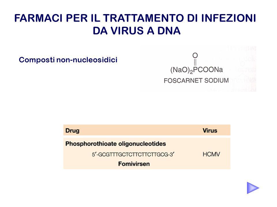 Composti non-nucleosidici FARMACI PER IL TRATTAMENTO DI INFEZIONI DA VIRUS A DNA