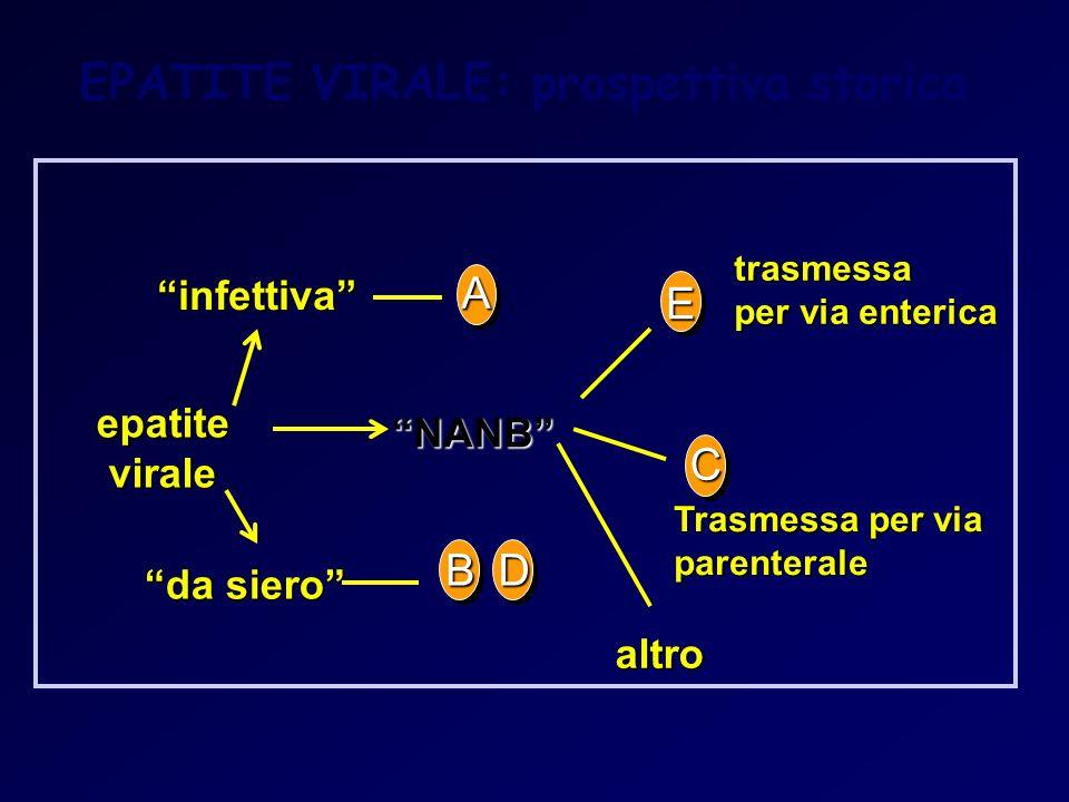 A infettiva da siero epatite virale trasmessa per via enterica altro altro E NANB BD C EPATITE VIRALE: prospettiva storica Trasmessa per via parentera