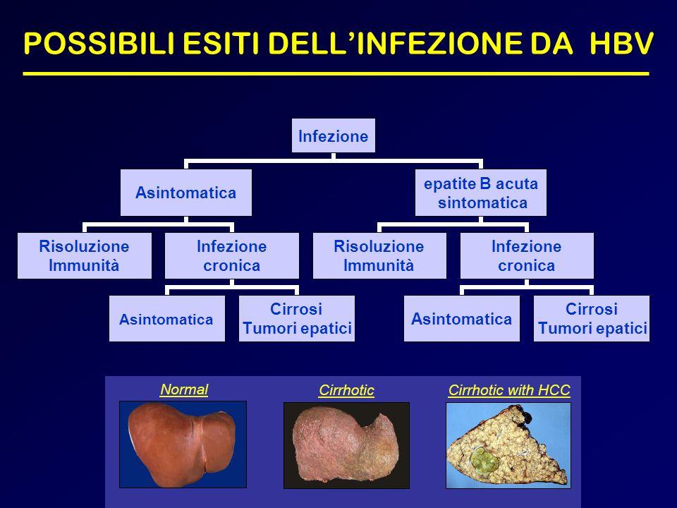 POSSIBILI ESITI DELLINFEZIONE DA HBV Infezione Asintomatica Risoluzione Immunità Infezione cronica Asintomatica Cirrosi Tumori epatici epatite B acuta