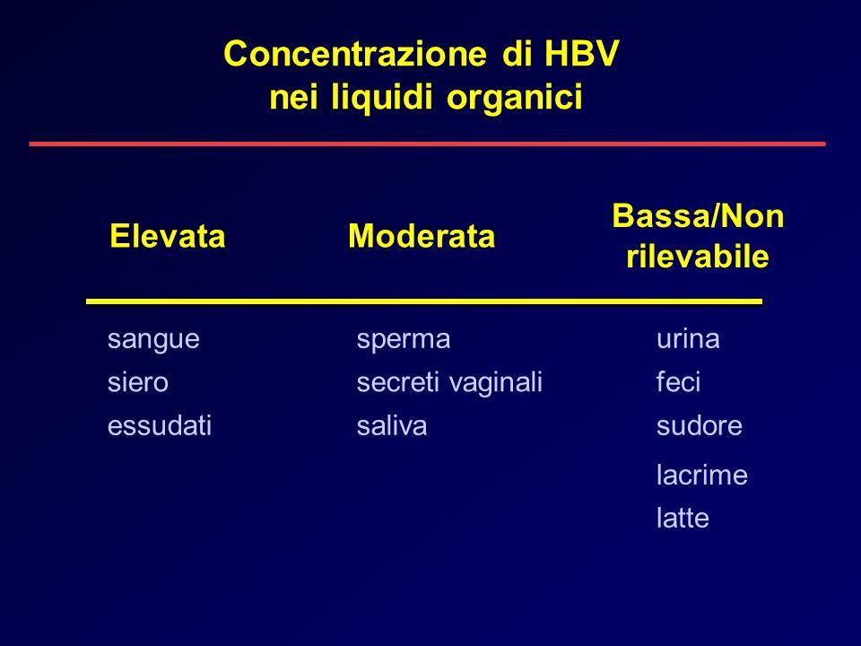 Bassa/Non rilevabile ElevataModerata sperma sierosecreti vaginali sangue essudatisaliva urina feci sudore lacrime latte Concentrazione di HBV nei liqu